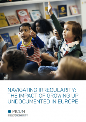 Cover of the publication Navigating Irregularity