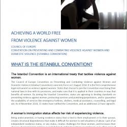 ES: Fact Sheet – Convenio del Consejo de Europa sobre la prevención y la lucha contra la violencia doméstica y contra la mujer. (Convenio de Estambul)