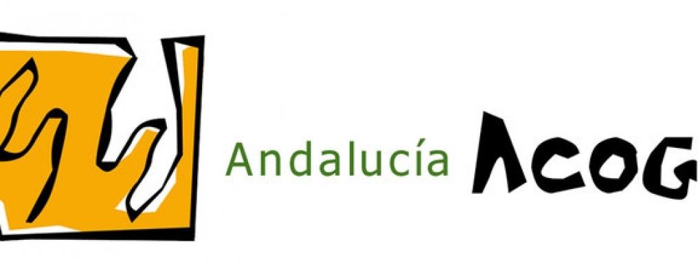 Federacion Andalucia Acoge