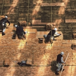 Employers' sanctions: will the EU finally take steps to protect migrant workers?